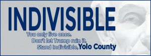 Indivisible Yolo, you only live once don't let Trump ruin it.